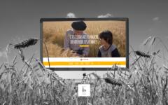 Vivescia, le digital global native